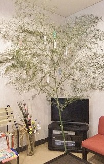 tanabata201407