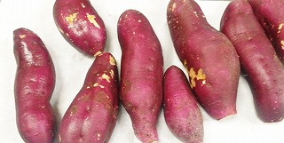 sweet potato201611
